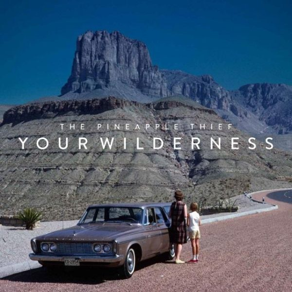 pineapple-thief-wilderness